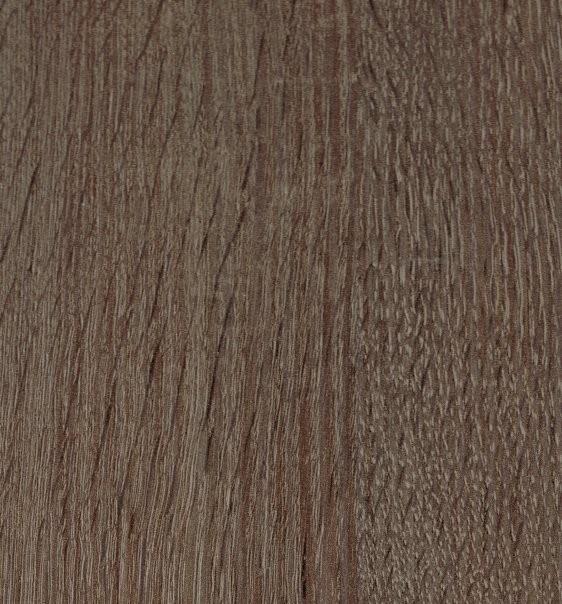 Britannia Oak